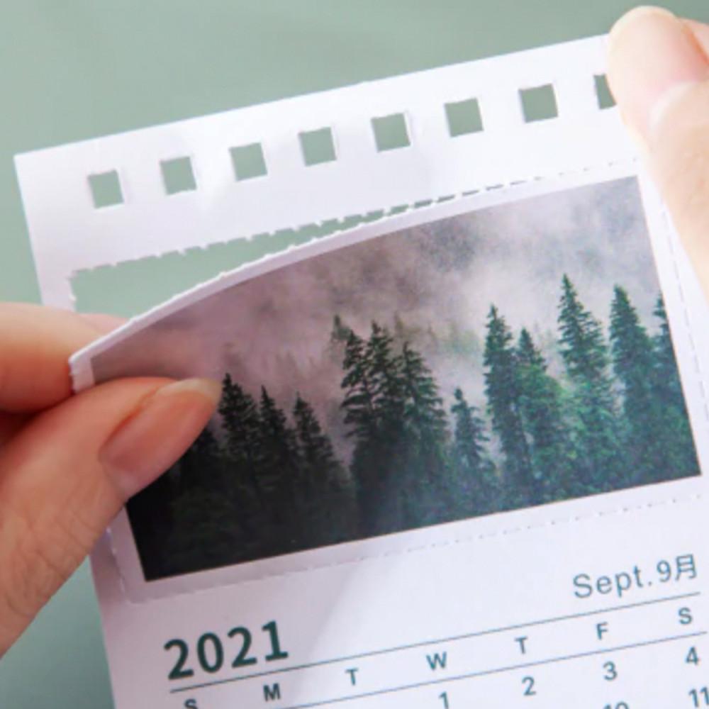 تقويم ميلادي 2022 صور فوتوغرافية غابة أشجار أخضر طريقة تنظيم المكتب