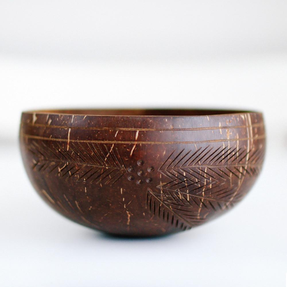 وعاء جوز الهند الطبيعي كوستر خشب ملعقة فيقن نباتي عروض موقع هدايا
