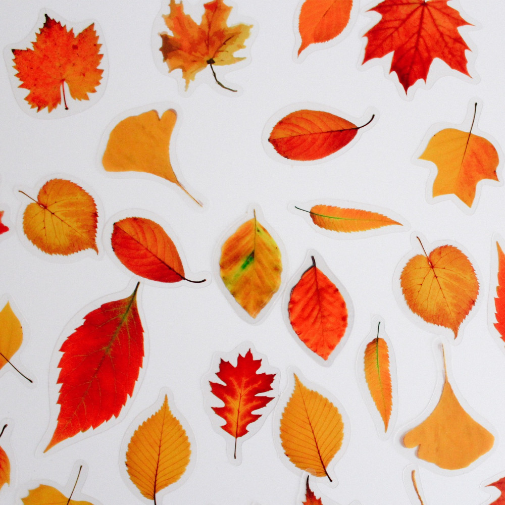ستيكرات موسم خريف ستيكر لابتوب تصميم كولاج ملف ورق ملاحظات متجر