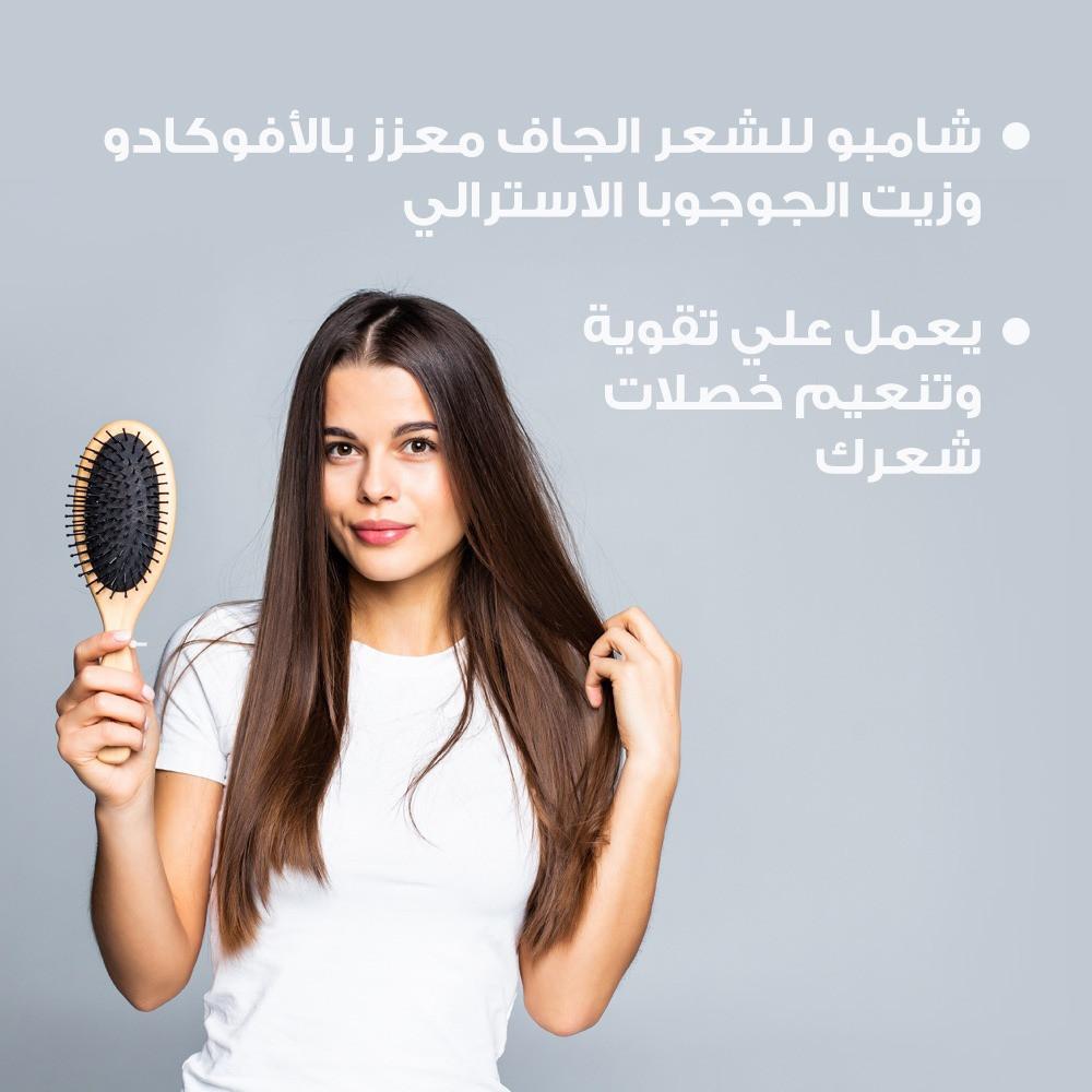 شامبو أفوكادو ترطيب الشعر الجاف تنعيم متجر أفضل منتجات العناية بالشعر