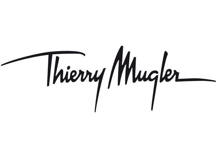 تيري موغلر