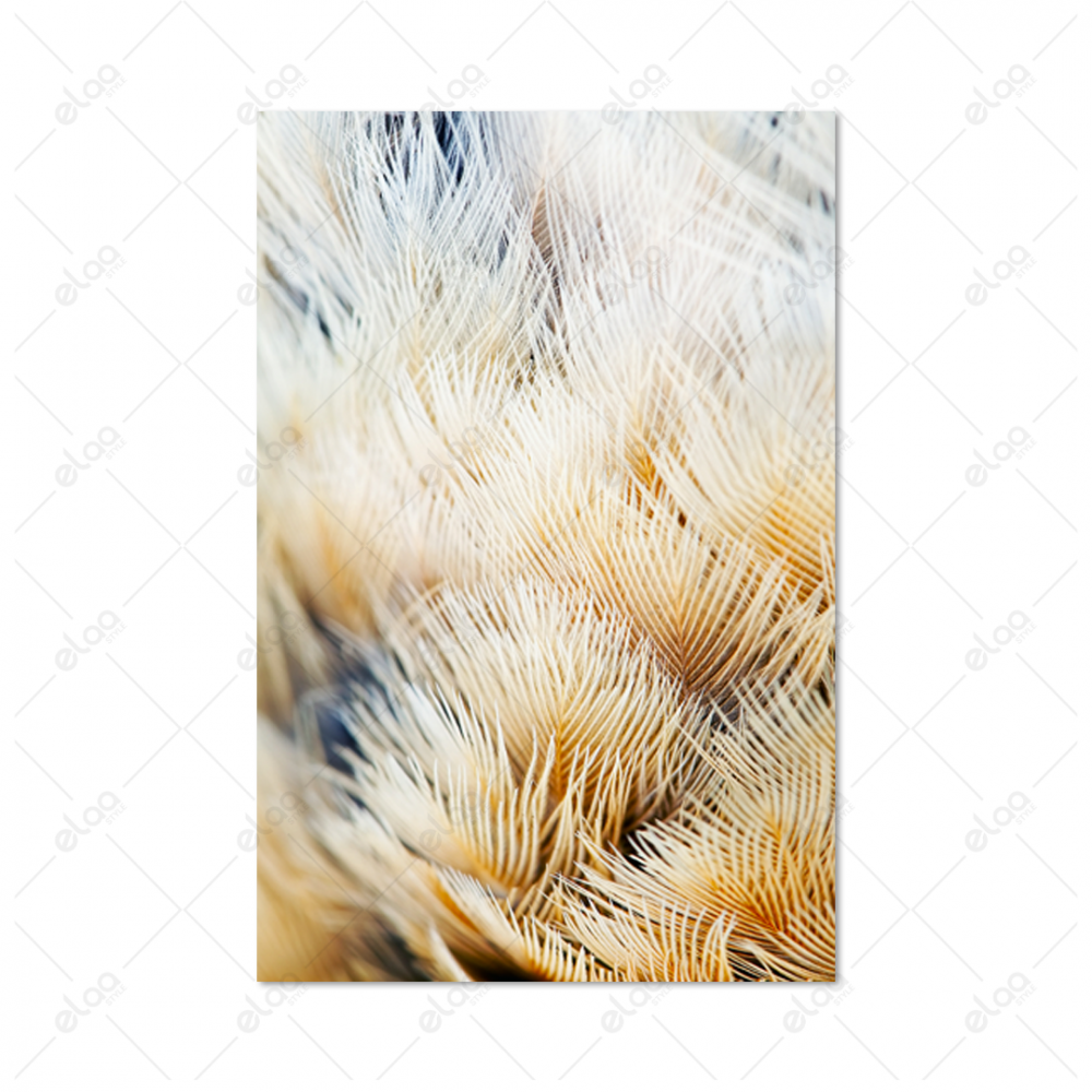 لوحة منظر طبيعي مقربة لريش عصفور بدرجات اللون البيج