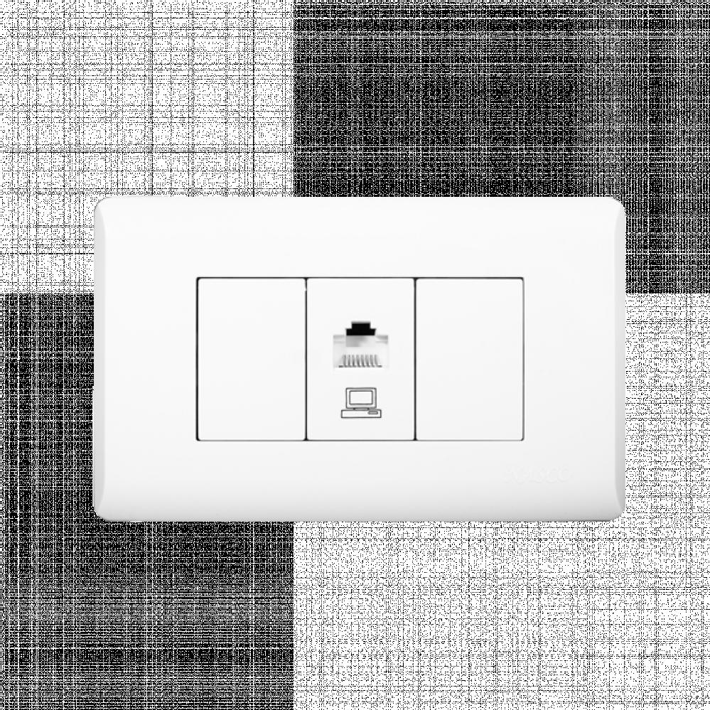 فيش كمبيوتر - انترنت - شبكات - نظام أمريكي - Network Socket