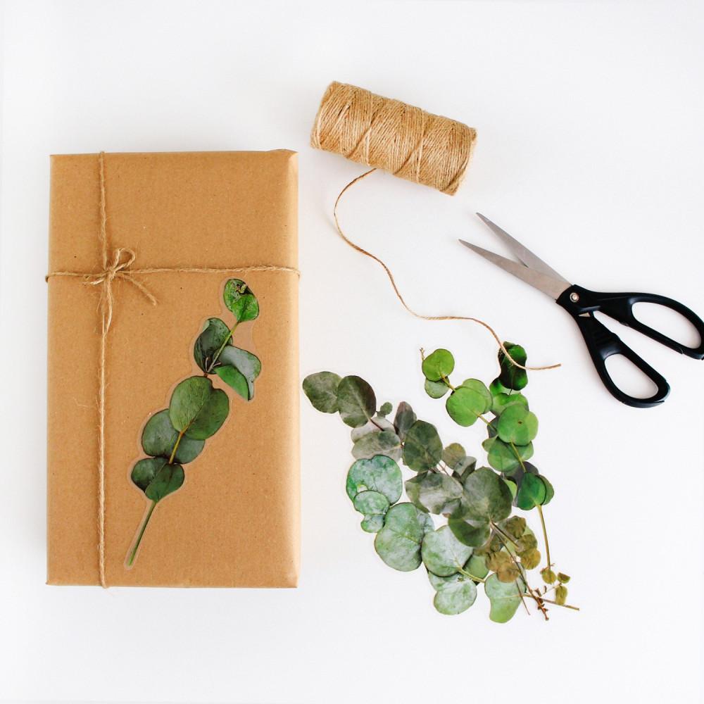 ستيكرات نباتات مجففة أخضر ستيكر لتزيين اللابتوب أفكار لتغليف الهدايا