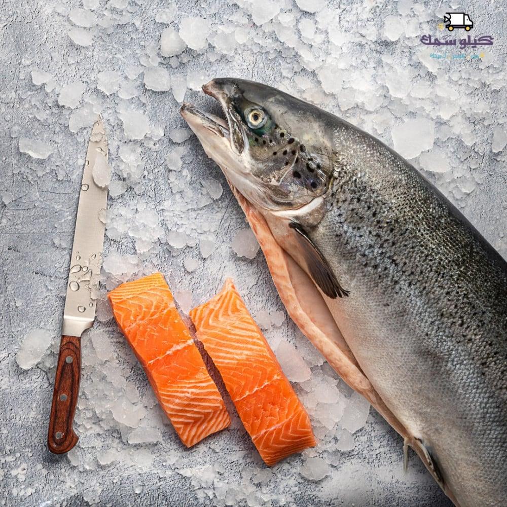 سمك سالمون