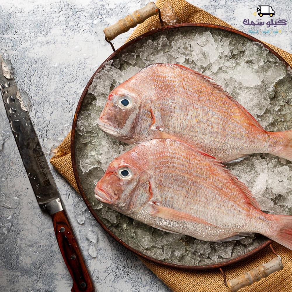 سمك عندق