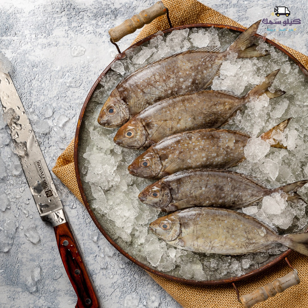 سمك صويفي صافي صغير