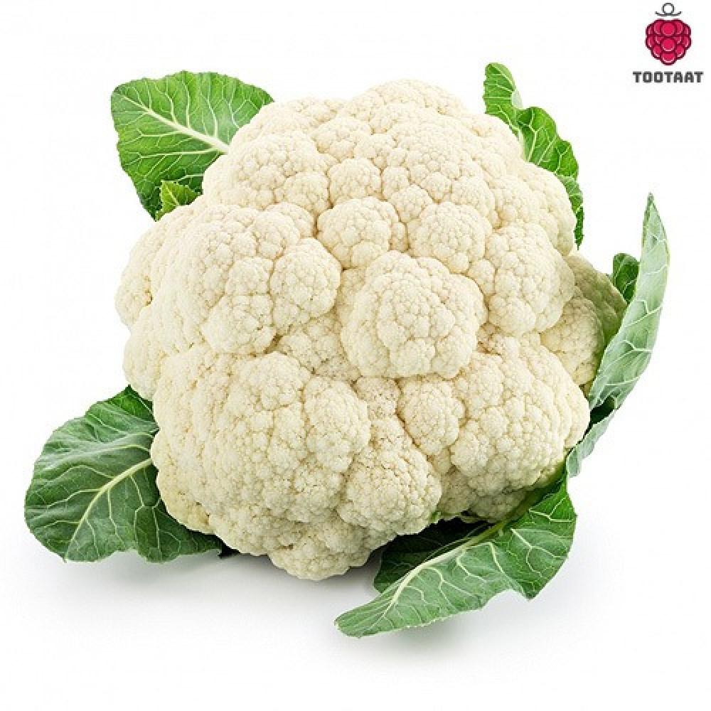 زهرة Tootaat Cauliflower