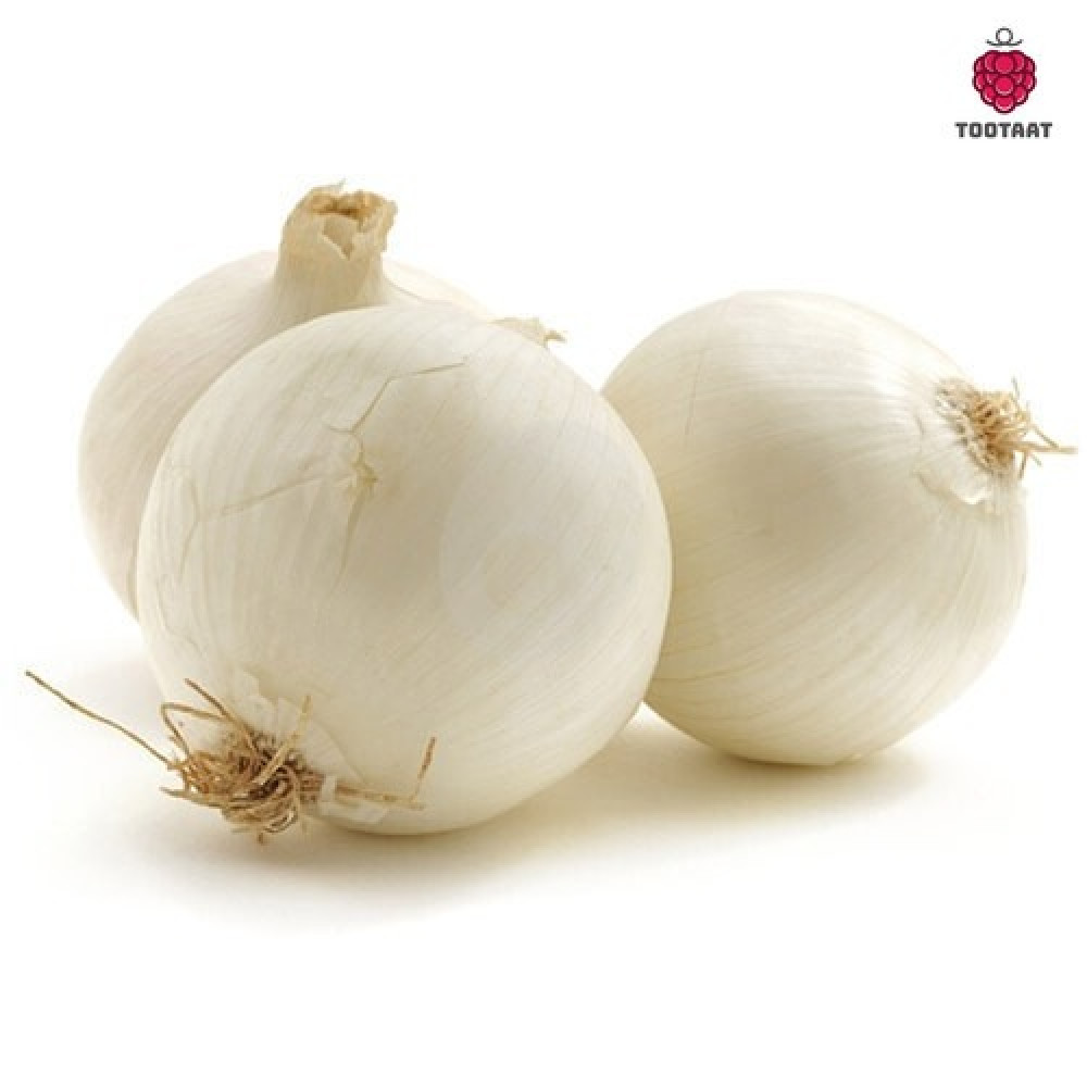 بصل أبيض White onion