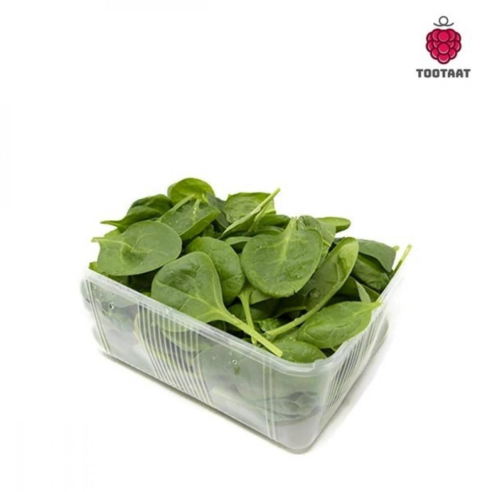 بيبي سبانخ Baby Spinach