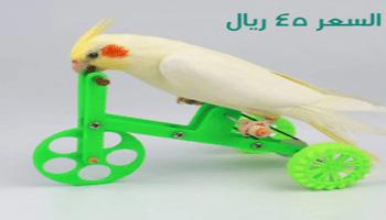 دراجة لتدريب الطيور