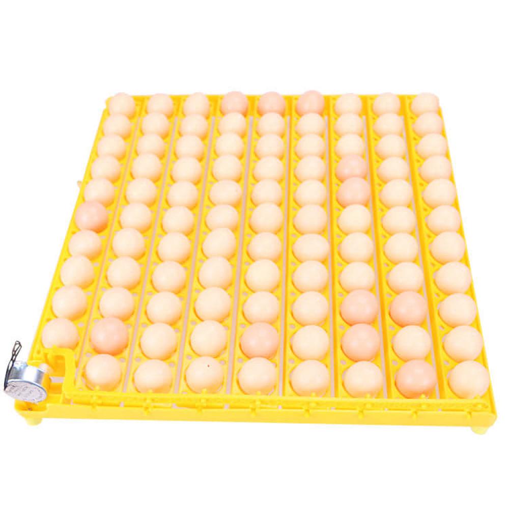 فقاسة بيض 98بيضة-عون المربي للفقاسات والنتافات والحاضنات وقطع الغيار