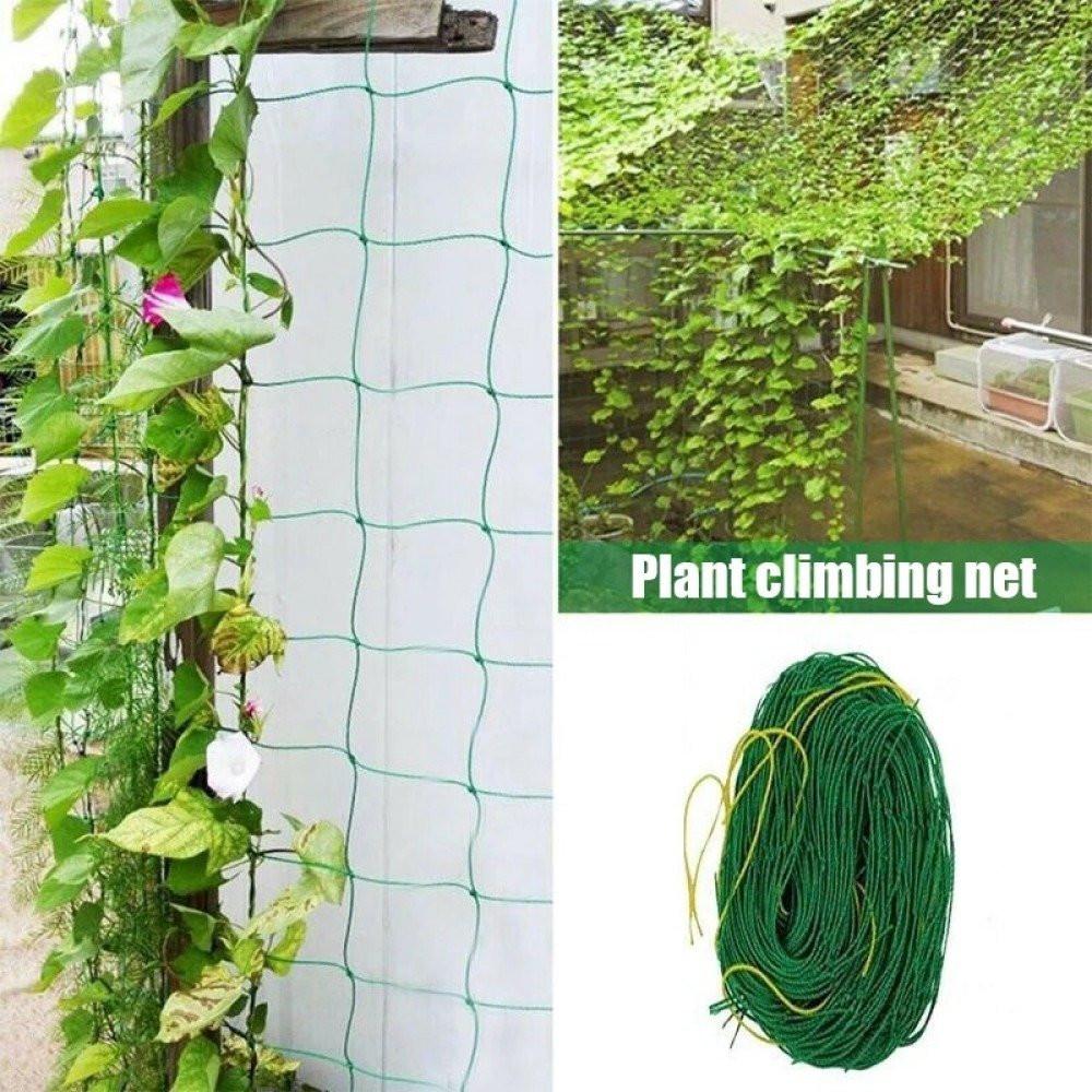 شبكة تسلق للنباتات