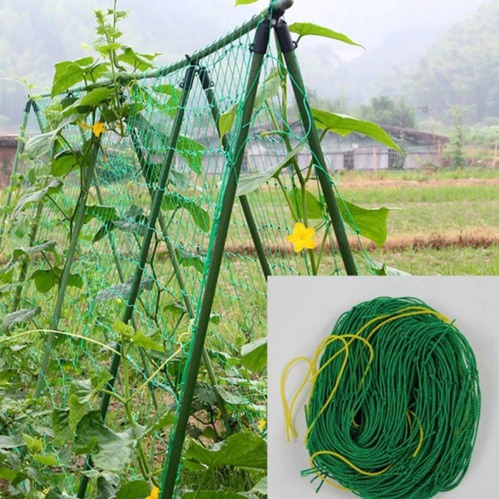 شبكة لتسلق النباتات