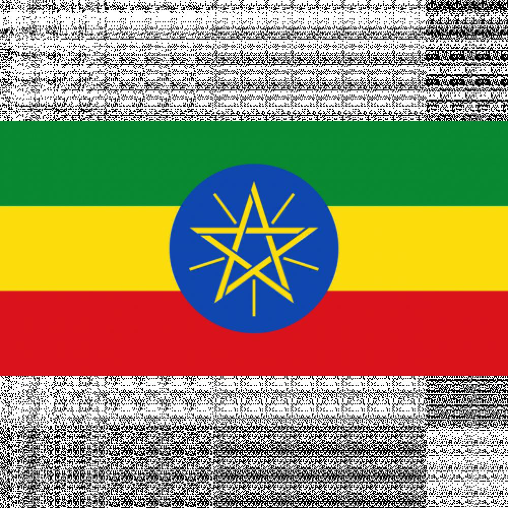 بياك-فوليم-اثيوبيا-بينسا-قهوة-مختصة
