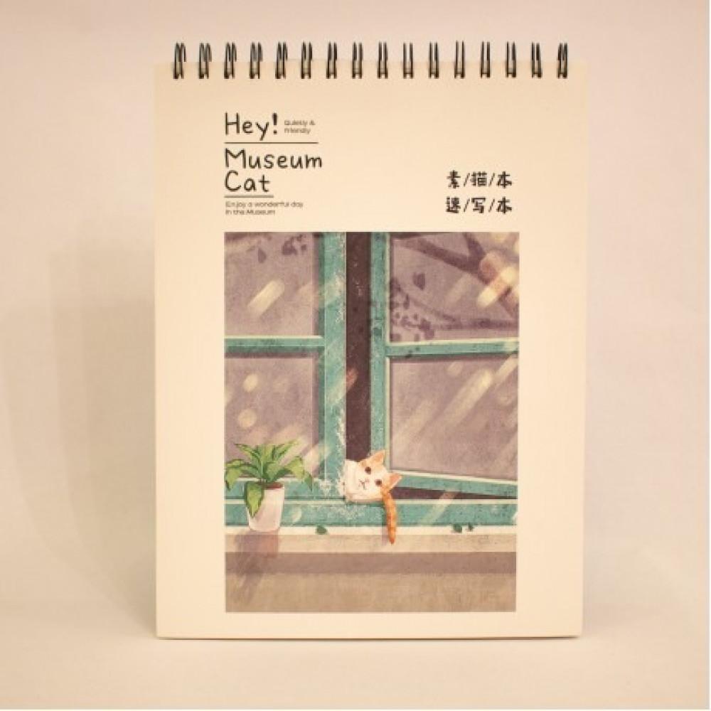 كراسة القط و النافذة
