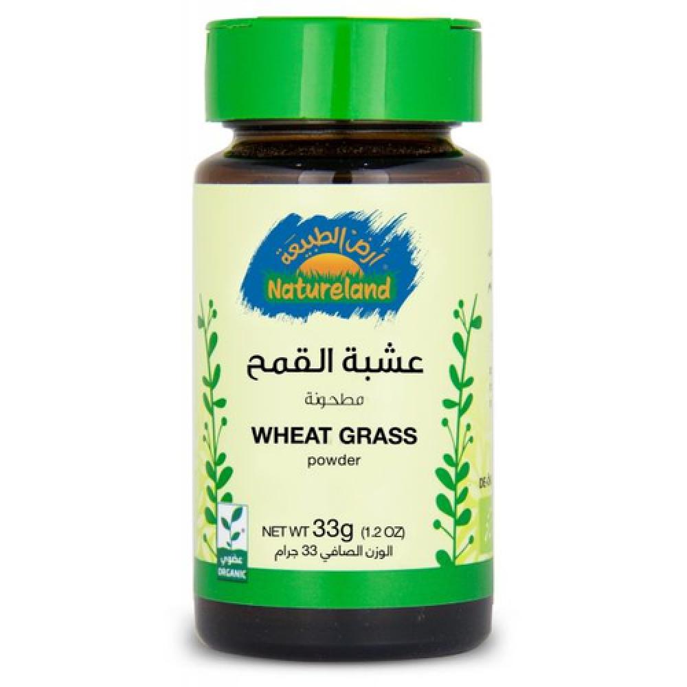 نبات القمح مطحون 33 جرام