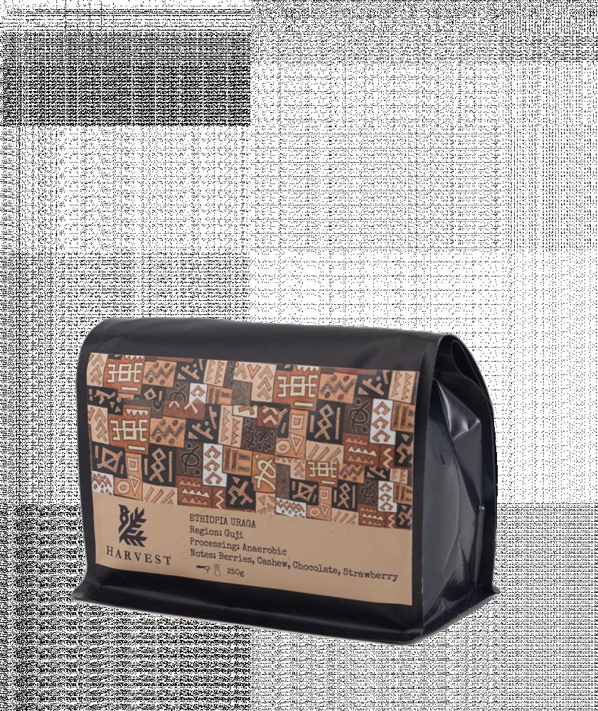 بياك-هارفست-اثيوبيا-أوراقا-قهوة-مختصة