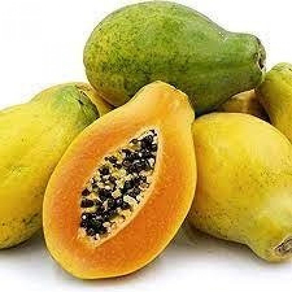 بذور البابايا التايلندي  - Carica papaya