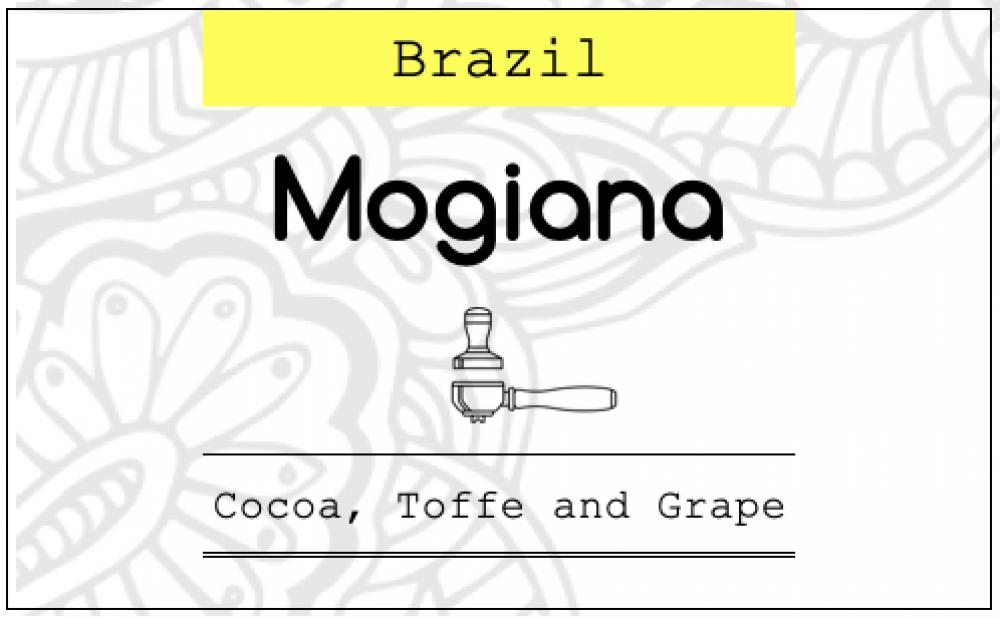 موقيانا البرازيل محمصة اكتوبر
