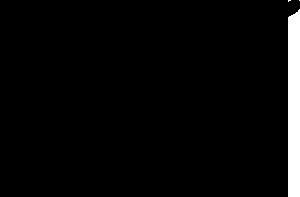 Rouya - PUMA