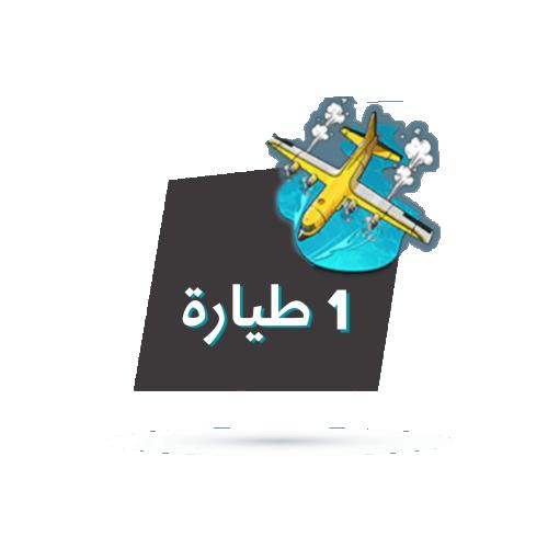 طيارة شعبية ببجي