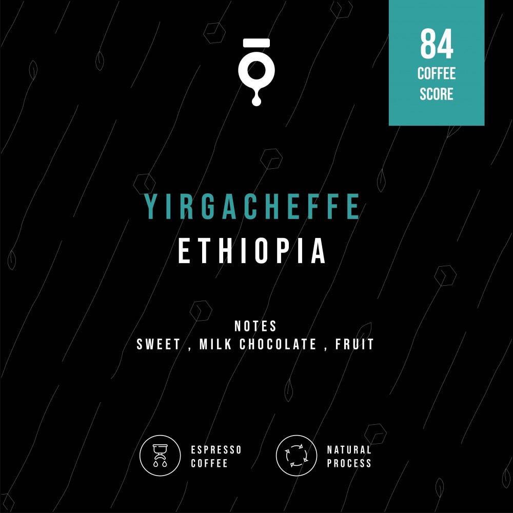 كوهي اثيوبيا يرقاتشيفي