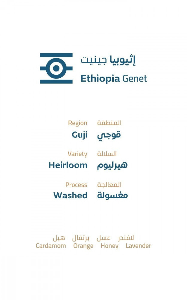خطوة جمل اثيوبيا جينيت