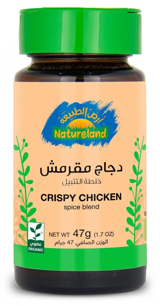 خلطة تتبيلة دجاج مقرمش 47 جرام Crispy Chicken Spice Blen
