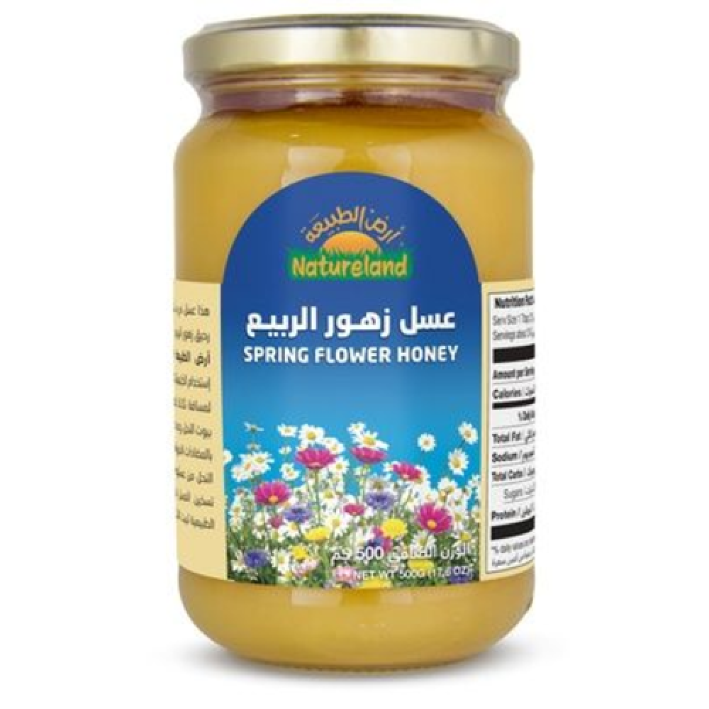 عسل زهور الربيع عضوي 500 جرام