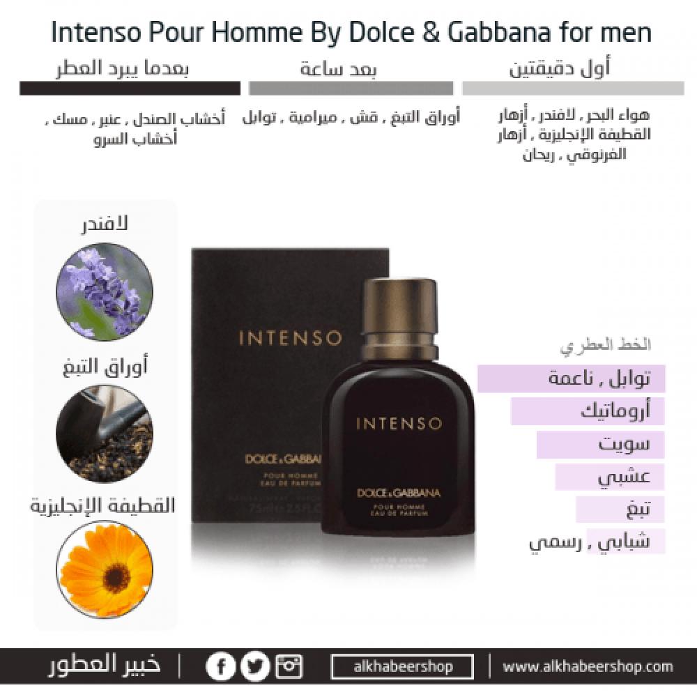 Dolce Gabbana Intenso for Men Eau de Parfum خبير العطور