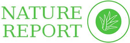 ناتشورال ريبورت - Natural Report
