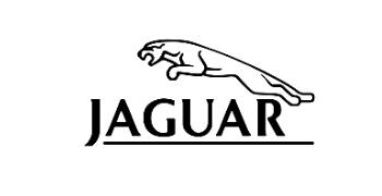 جاغوار - jaguar