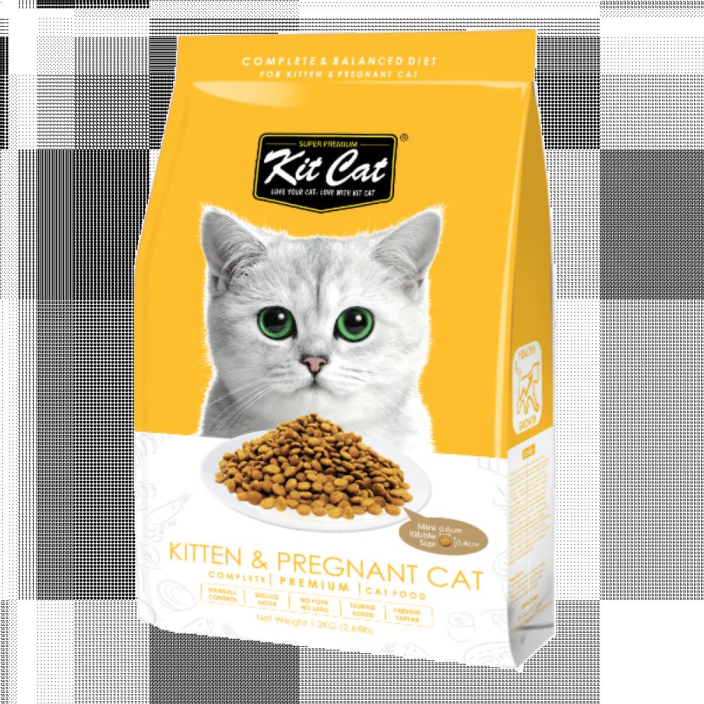 طعام جاف للقطط كيت كات للقطط الصغار والحوامل Mypet