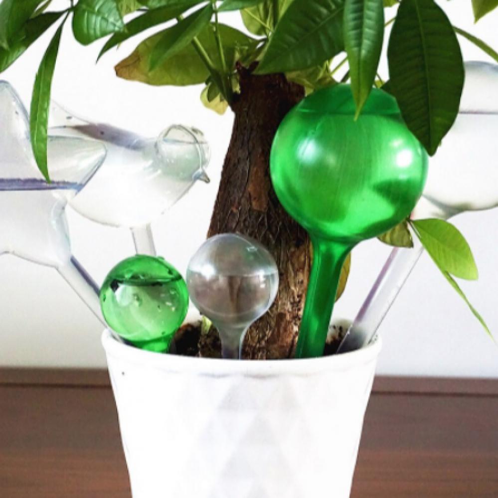 وعاء تقطير ذاتي لنباتات