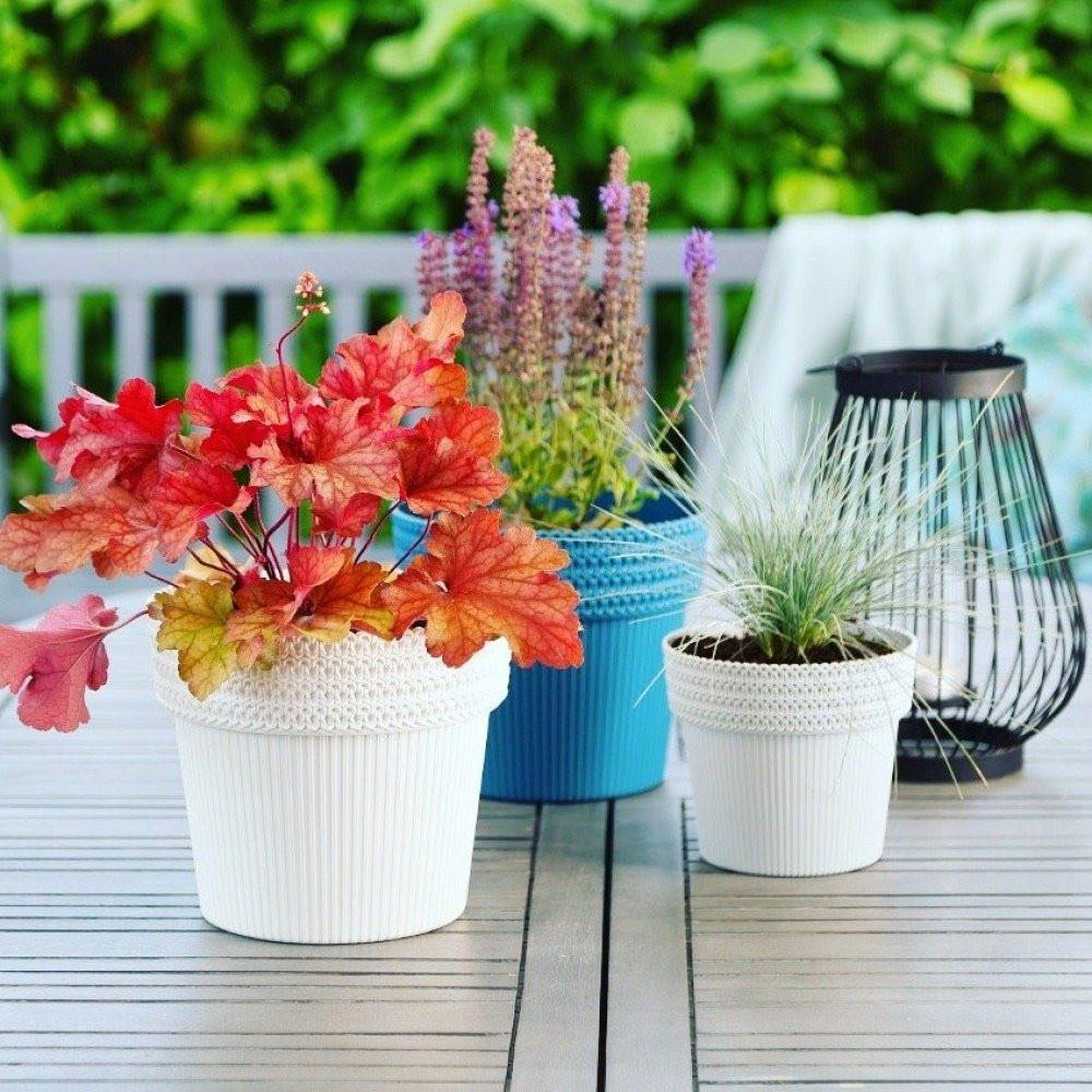 وعاء زراعي لنباتات