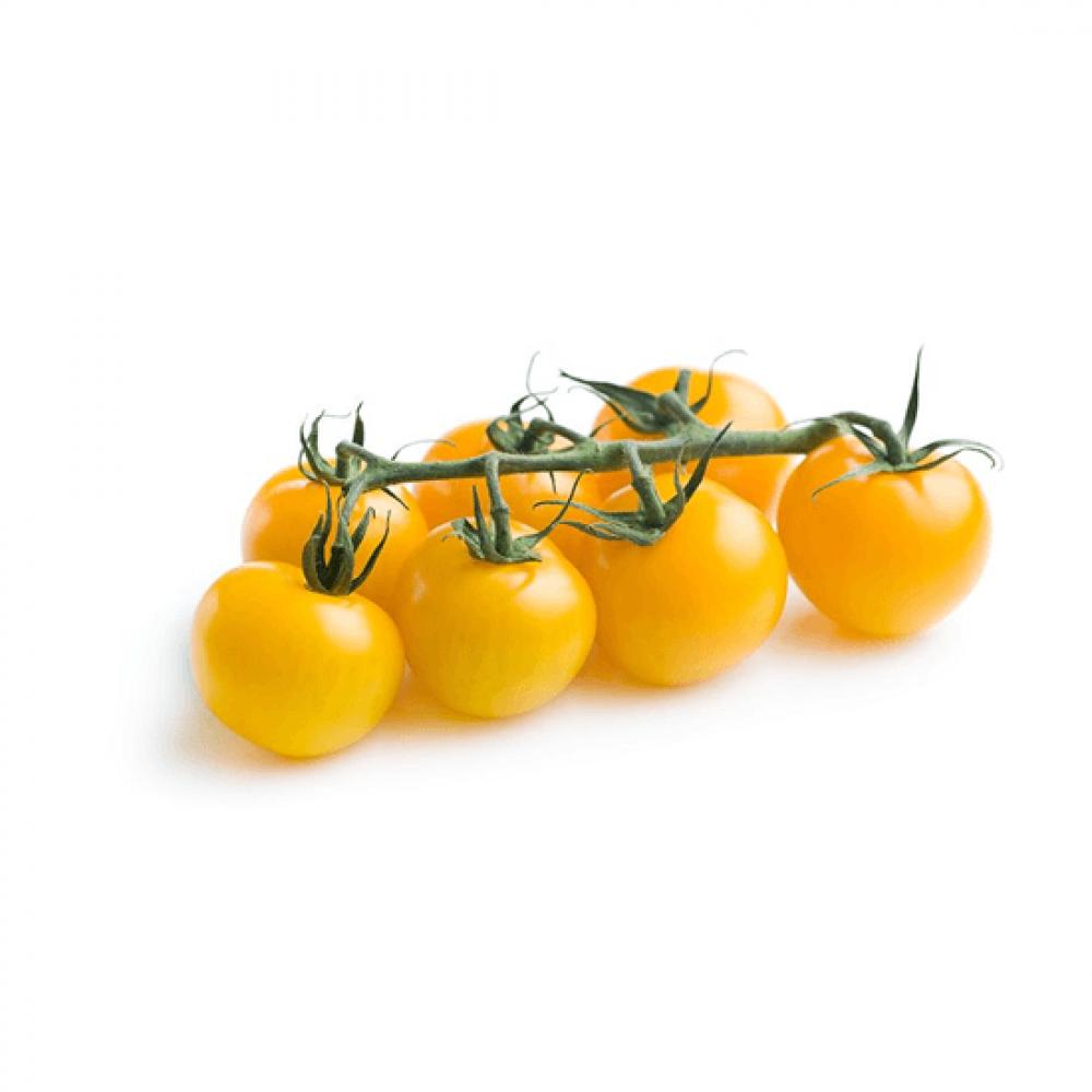 بذور طماطم شيري اصفر