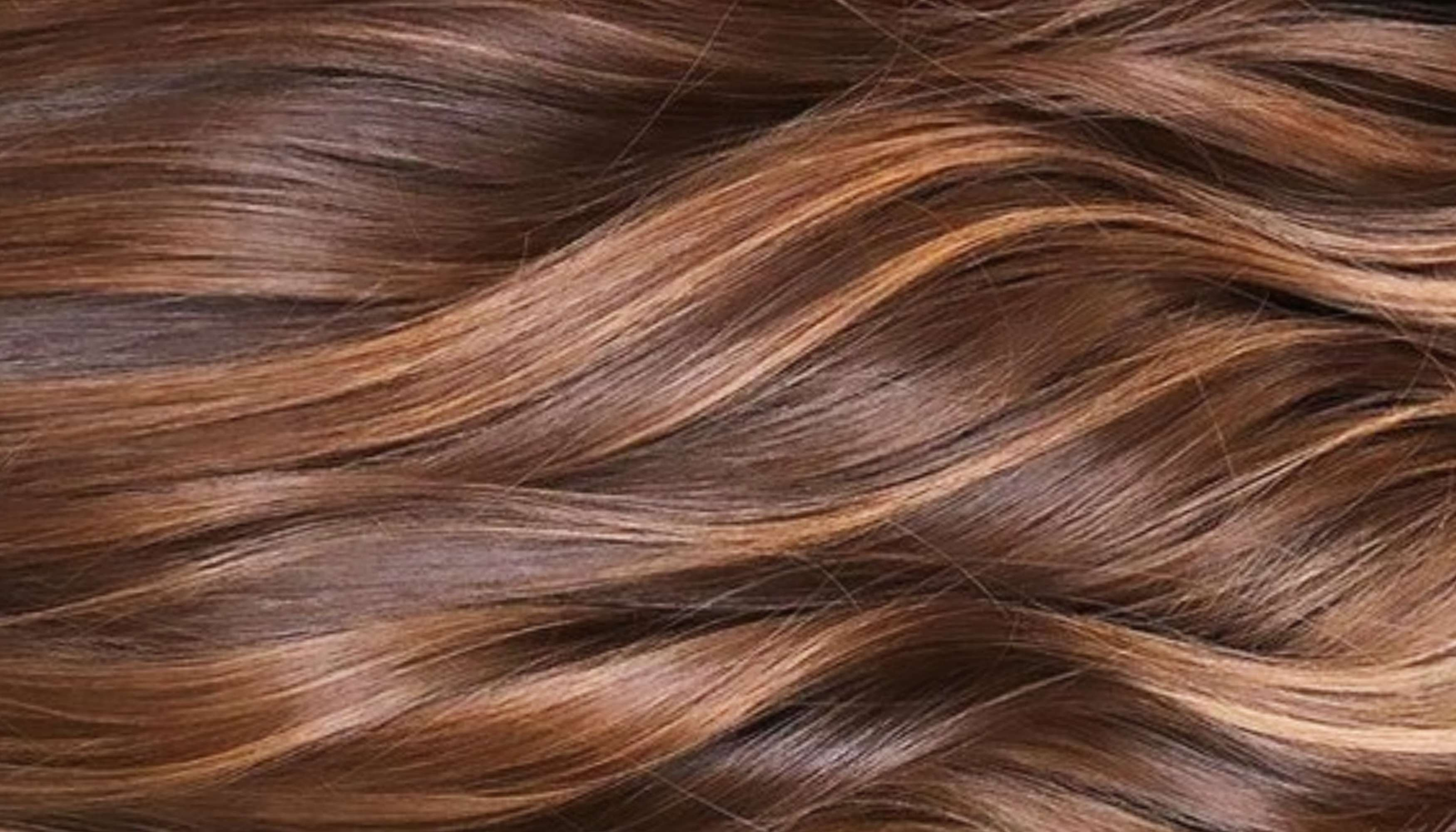 عطور الشعر