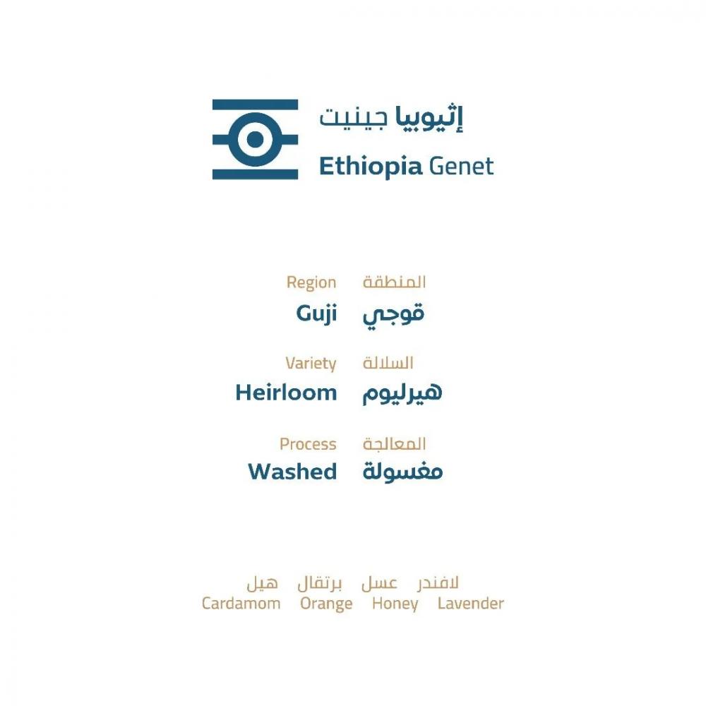 اثيوبيا جينيت محمصة خطوة جمل قهوة مختصة