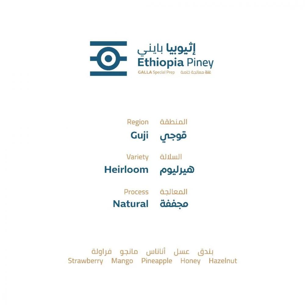 اثيوبيا بايني محمصة خطوة جمل قهوة مختصة